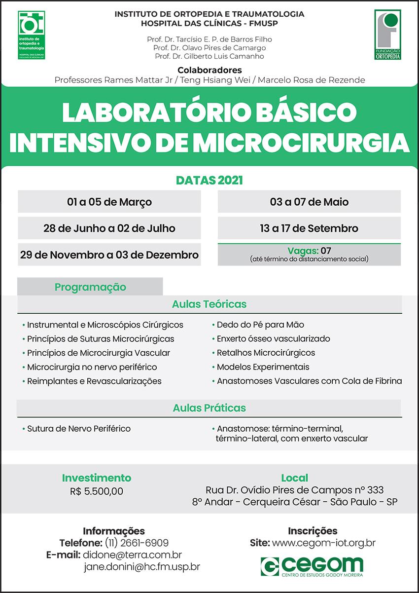 Microcirurgia Básica
